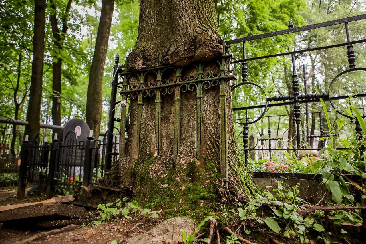 Рэшткі агароджы вакол магілы на Вайсковых могілках у Менску